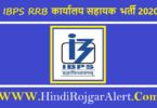 IBPS RRB Office Assistant Bharti 2020 IBPS RRB बैंक कार्यालय सहायक भर्ती 2020